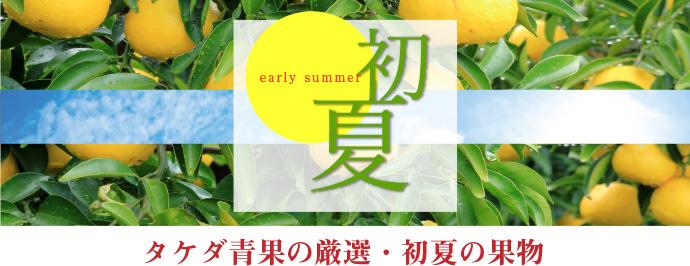 2019初夏のおすすめ果物