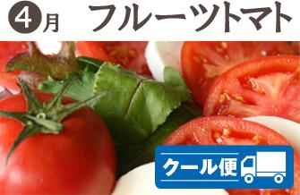 武田の頒布会4月・フルーツトマト