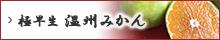 山北温州みかん(極早生種)