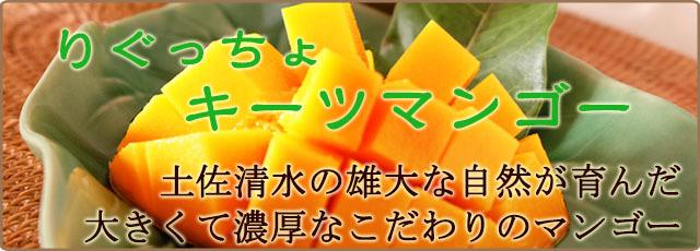 りぐっちょキーツマンゴーの通販