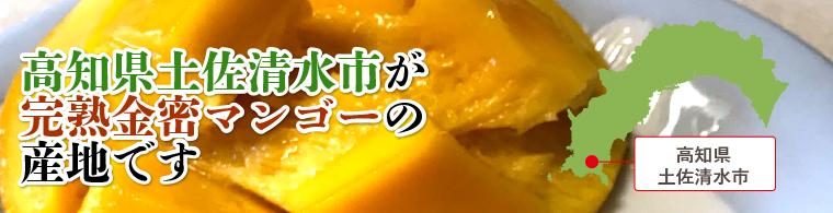 高知県土佐清水市が完熟金密マンゴーの産地です。