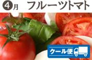 武田の頒布会4月はフルーツトマト