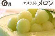 武田の頒布会6月エメラルドメロン